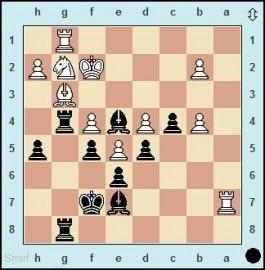 """""""Schachmaschine"""" und Salonlöwe"""
