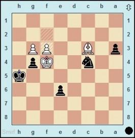 Naiditsch schlägt Weltmeister Carlsen