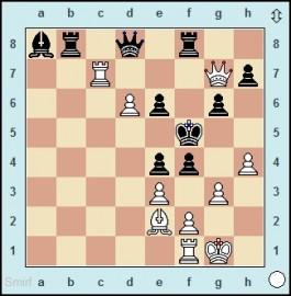 Carlsen trumpft an allen Fronten auf